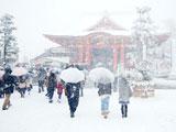 雪降るなか成田山へ初詣