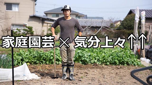 家庭菜園 X 気分上々↑↑ コラボ動画を作ってみた(笑) mihimaru GTコラボ